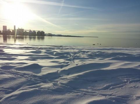 Vinterbillede December 2014