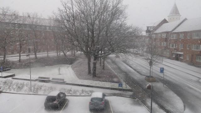 masser af sne i Ringsted